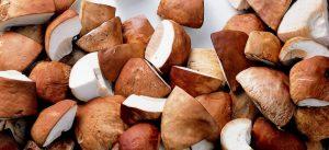 Гриб белый резаный купить в Абакане